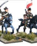 Polish army cavalry command?