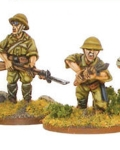 Imperial japanese army infantry squad?