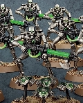 Necron Warriors (with Canoptek Scarabs)?