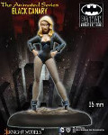 BLACK CANARY (animated series)?