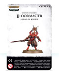 Bloodmaster Herald of Khorne?