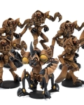 Dreadball - locust city chiefs z'zor team?