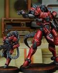 Iguana squad (tag)