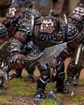 Ogre warriors?